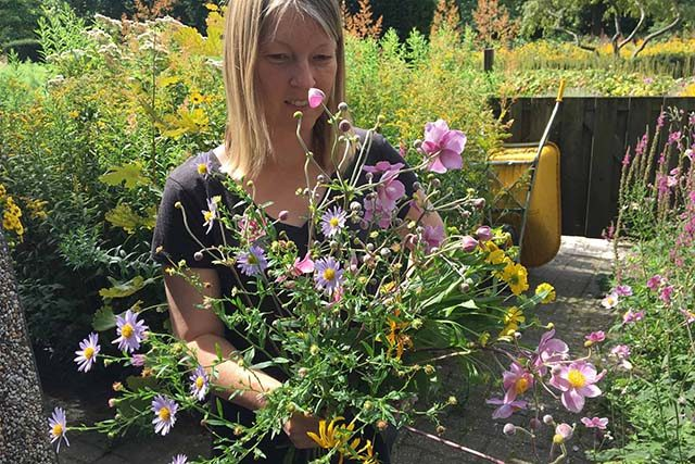 pluk zelf je kunstwerk van bloemen in de tuin van darwin
